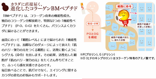 bm-peptides-1l