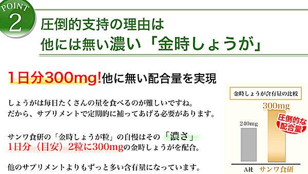 kinntoki-syouga-1e