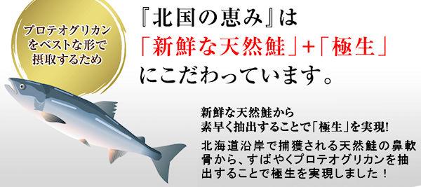 hokkokuno-megumi-1j
